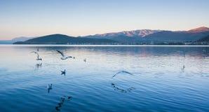 Прибрежный пейзаж озера erhai стоковое изображение rf