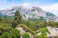 Beautiful landscape with views of the famous mountain AI Petri in the Crimea, which is visited by many tourists. Forest of. Crimean Peninsula, Russia, view of royalty free stock photography