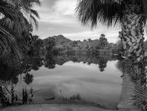Пруды B&W Papago около Отверсти-в--утеса Феникса Аризоны стоковая фотография rf