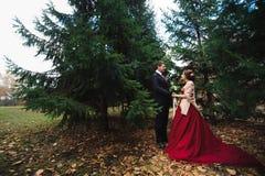 прогулки парка пар пары в лесе осени стоковое изображение rf