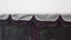 Проливной дождь летом под тентом Шторм дождя на тенте , сильные падения дождя, шторм, видеоматериал
