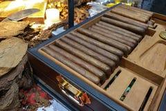 Продукция кубинських сигар в небольшой фабрике стоковая фотография rf