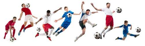 Профессиональные люди - футболисты футбола с изолированной шариком белой предпосылкой студии стоковые фотографии rf