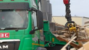 Процесс молоть древесина в швырке опилк повторно используя машину Ветви дробилки шредера акции видеоматериалы