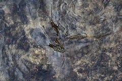 Поверхность воды с пульсациями погода ветреная предпосылка или текстура стоковые изображения rf