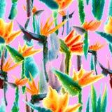 Повторение тропической картины флористической печати джунглей экзотической яркой яркой безшовной бесконечное живое иллюстрация вектора