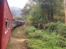 Поезд в горах. Train forest srilanka island summer royalty free stock images