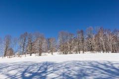 покрытые валы снежка гор горы дома hoarfrost стоковые изображения