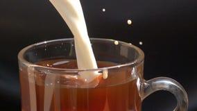 Полейте парное молоко в стекло черного кофе видеоматериал