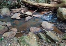 Подача воды на утесы к падение стоковое фото