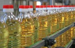 Подсолнечное масло в фабрике стоковая фотография rf