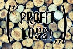 Потеря выгоды показа знака текста Счет в конце года схематического фото финансовый содержит полные доходы и расходы деревянные стоковые изображения