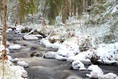 Поток в зиме стоковая фотография
