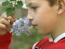 Портрет мальчика с ветвью сирени стоковые изображения rf