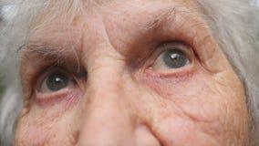 Портрет старой бабушки смотря вверх Закройте вверх по глазам пожилой женщины с морщинками вокруг их видеоматериал