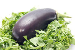 Ð•ggplant stock fotografie