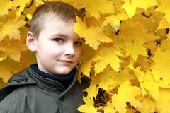 Л шР² in het de herfstpark royalty-vrije stock afbeelding