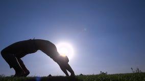 Ð在草坪的¡ apoeira 股票视频