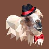 Ð ¡ amel in een rode hoed royalty-vrije illustratie
