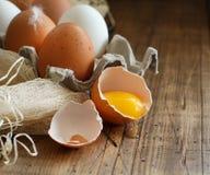 Ð-¡ hicken Eier in einem Kasten Lizenzfreies Stockfoto