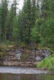 Ð-¡ Lappen nahe dem Fluss taiga Die Flüsse des Nordens von Sibirien Russland Stockbilder