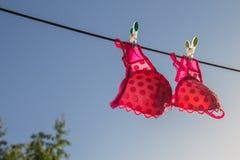 Ð-¡ lothesline mit einem rosa BH Lizenzfreie Stockfotos