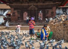 Дама непальца и ее дети кормят голубей перед виском, Катманду, Непалом стоковые фотографии rf
