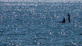 Дата на соке на море стоковое изображение