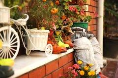 Декоративный сад в Стамбуле стоковые фото