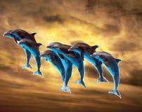 Дельфины на небе стоковые фото