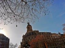 Деревья и здания стоковые изображения rf