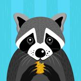 Raccoon on blue wooden background with cookie royalty free illustration