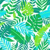 Tropical vector green leaves seamless pattern. Exotic wallpaper. Summer design. Tropical jungle foliage, leaf nature background, v. Intage tone vector illustration