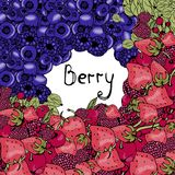 Berry background, bright graphics, stock illustration