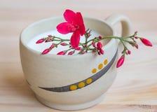 ¡ Ð кладет чашку при орнамент поливы, заполненный молоком Стоковые Изображения