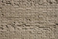 Ð 砖墙 免版税库存照片