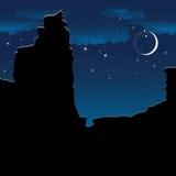 Ð ¡ anyon bij nacht Vector Stock Afbeeldingen
