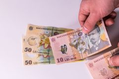Ðœan conta le banconote rumene su un primo piano bianco del fondo Fotografia Stock Libera da Diritti