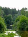 Ð'end nel fiume Immagini Stock