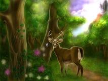 Ð•forêt nchanting avec de beaux cerfs communs Images libres de droits