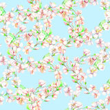 Ð ¡ herry, μήλο, λουλούδια Άνευ ραφής σχέδιο Watercolor Στοκ Φωτογραφία