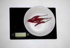 Ð ¡ hili在一数字式白色厨房等级以子弹密击 (称produ 库存照片