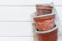 Оld-Blumentöpfe Stockbilder