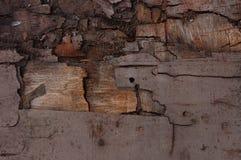 Оldhout Stock Afbeeldingen