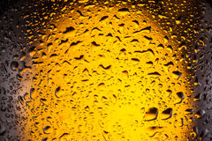 Drops on a bottle beer. Royalty Free Stock Images
