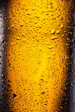 Drops on a bottle beer. Royalty Free Stock Image
