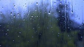 Дождь бежать вниз с окна видеоматериал