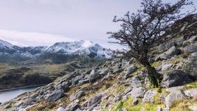 Долина Snowdonia северное Уэльс Tryfan Ogwen стоковая фотография