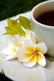 Ð-¡ oben des Tees oder des Kaffees lizenzfreie stockfotografie