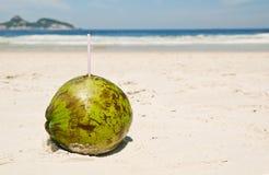 Сoconut on beach in Rio de Janeiro Royalty Free Stock Photography
